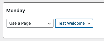"""Graphic showing """"Use a Page"""" option"""